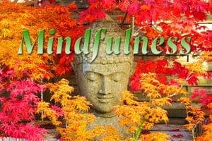 Mindfulness training : start 4 september @ Word Wie Je Bent | Haarlem | Noord-Holland | Nederland